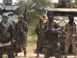 Boko Haram militants have carried out a series of audacious attacks in recent years