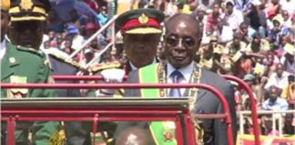 Mugabe was captured bowing to a portrait of himself while inspecting the guard.