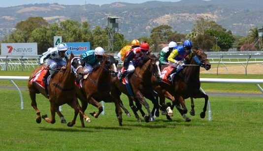 3 great horseraces of South Africa