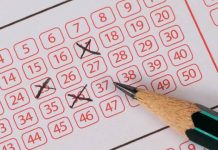 Everything You Need to Know about South Africa's Love of Lotteries
