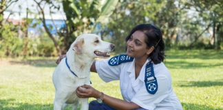 Seen here:  Inspectorate Manager Candice Sadayan with Sandy, who has already been rehomed. Photo Credit: Terence Hogben