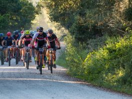 The ASG-Ellsworth outfit of HB Kruger (front) and Stuart Marais (right) lead the bunch on the 86km second stage of the Liberty TransCape MTB Encounter from Wilderness to Mossel Bay today. The 614km, seven-stage race finishes at La Couronne Wine Estate in Franschhoek on Saturday.
