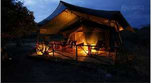 Aruba Camp and Safaris