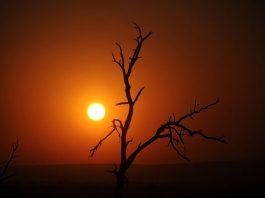 Sunrise Kruger National Park