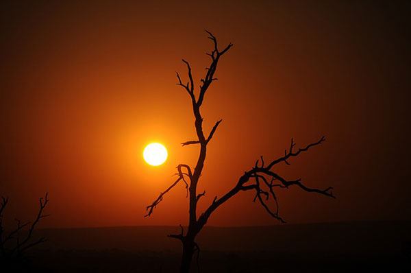 Sunrise Kruger National Park