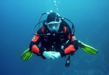 Top 4 Places To Scuba Dive in South Africa