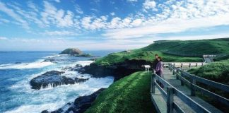 Never Ending Wonders explored with top Phillip Island tours from Melbourne