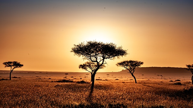 Ten Tips For Anyone Visiting Africa For The First-Time
