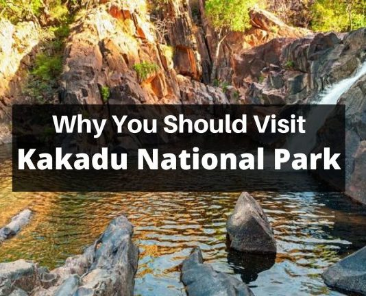 Why Shouldn't You Miss A Visit To Kakadu National Park?