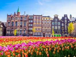 Five Reasons To Visit Amsterdam In European Springtime
