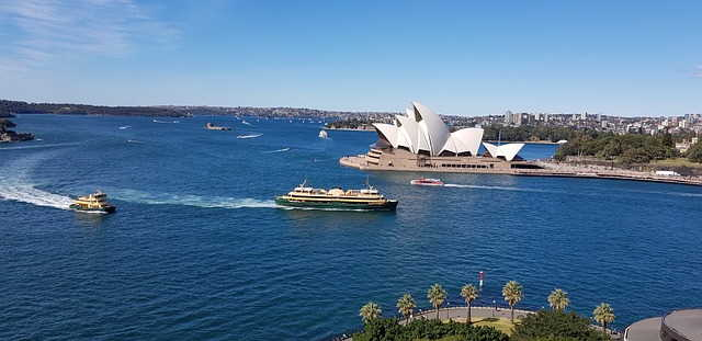 Intriguing whale watching cruise of Sydney and the Shark Island