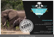 Cape Summer Villas' Beach to Bush Package