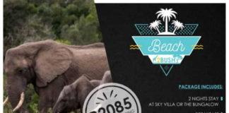 Cape Summer Villas' Beach to Bush Package