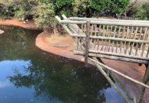 KZN South Coast's Crocworld Conservation Centre announces exciting new attractions