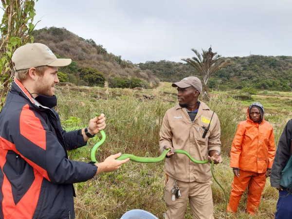 Mambas keep Crocworld staff busy on KZN South Coast