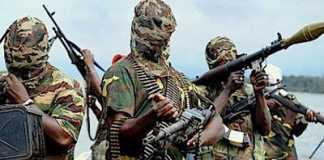 Boko Haram Islamist militants