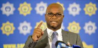 Minister of Arts and Culture, Nathi Mthethwa