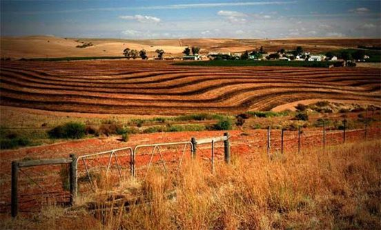 Call to object the new proposed law for agricultural land refom