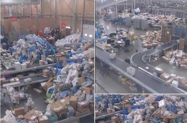 Health Food Warehouse South Africa