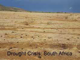 Drought Crisis: South Africa