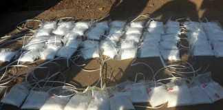 Drugs-found-in-Mpumalanga