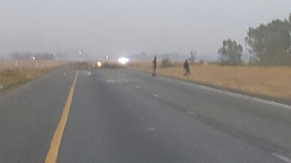 Protest action N4 and N12 Witbank