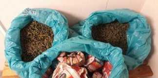 Cannabis-found-in-Cape-Town