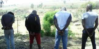 police-arrest-robbers-swiftly-in-woodmead