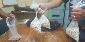 Suspect arrested for possession of mandrax tablets. Photo: SAPS