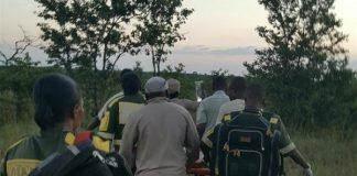 Kruger-National-Park-elephant-attack