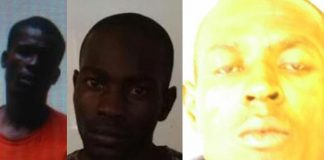 Manhunt for three escapees near Tzaneen. Photo: SAPS
