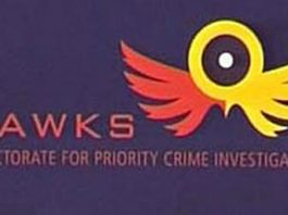 Bogus Hawks members operating in Polokwane. Photo: SAPS