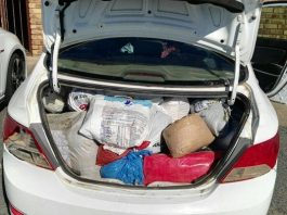 Man-arrested-with-cannabis-in-Port-Shepstone