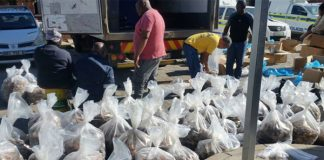 Two people arrested for possession of Abalone worth millions Photo: SAPS