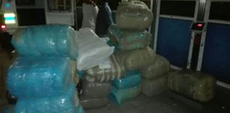 Two suspects arrested with 580kg Dagga in Paarl. Photo: SAPS