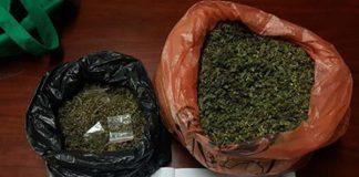 Alleged drug dealer arrested Photo: Alpha Alarms
