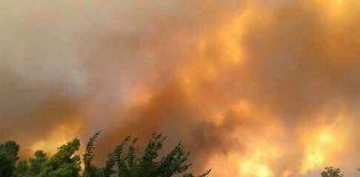 Knysna fire Photo: Arrive Alive