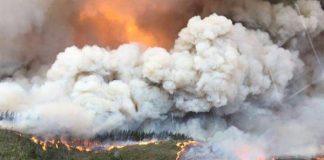 Knysna fire. Photo: Arrive Alive