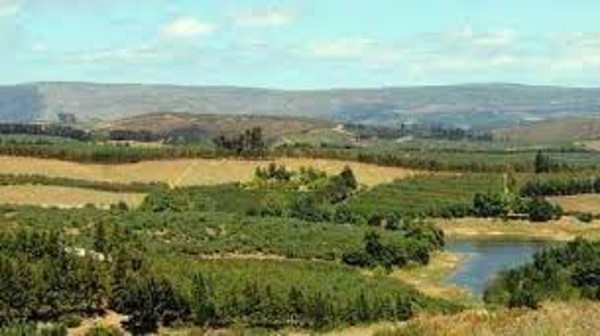 Land expropriation has nothing to do with empowerment | South Africa Today
