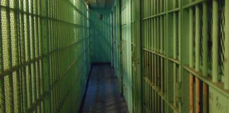 Life imprisonment plus 40 years for murder and robbery