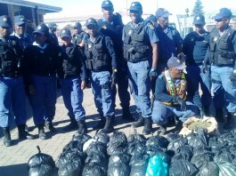 Police operation yielded fruits when 18 suspects were arrested Photo: SAPS
