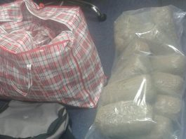 Large dagga stash discovered in SAPS search. Photo : SAPS