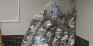 Police confiscate KHAT at Cape Town International Airport. Photo : SAPS