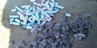 17 suspects arrested in SAPS drug operation. Photo : SAPS