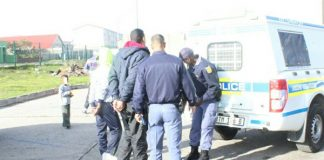 53 suspects arrested in police operation, Phillipi Photo : SAPS