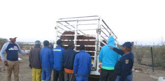 Butcher and six accomplices arrested for stock theft. Photo: SAPS