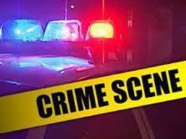 Brutal murder of woman (82), Vergelegen