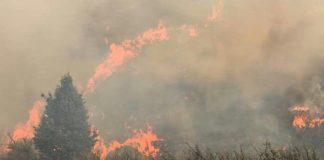 Veld fires destroy 7 farms, 20 more affected, Barkley East. Photo: SAPS