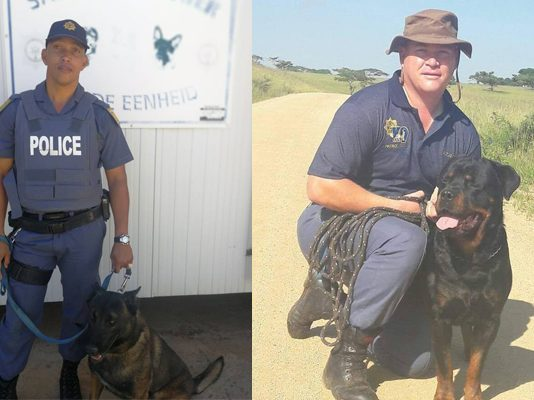 K9 unit saves the day during business burglary, Hartswater. Photo: SAPS