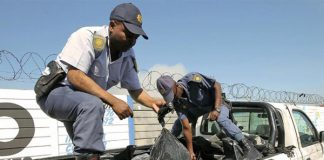 6742 units of abalone recovered, 3 arrested, Khayelitsha. Photo: SAPS